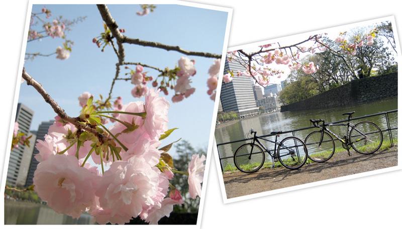 皇居まで自転車散歩。