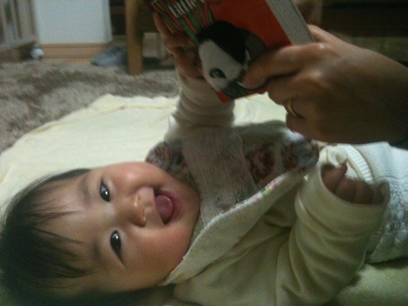 Little Panda / Finger Puppet Book