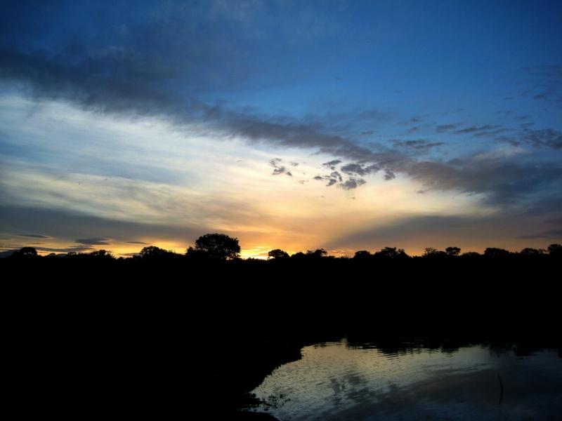 南アフリカ(クルーガーの市営保護区)その3